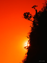 sunset #1 (e.nhan) Tags: life light art nature closeup landscape colorful colours dof bokeh arts backlighting enhan
