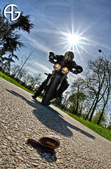 Hey !!! get outta my way !!! (A.G. Photographe) Tags: street fish paris france nikon snail fisheye ag triumph moto motorcycle nikkor triple escargot franais hdr parisian motard anto motocicleta photographe xiii parisien 16mmfisheye d700 streettriple antoxiii hdr9raw agphotographe