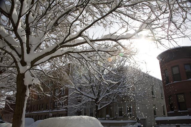 snow day 1.27.2011