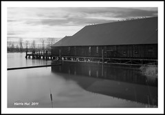 Britannia Shipyard Infrared 6996e (Harris Hui (in search of light)) Tags: canada reflection water monochrome birds vancouver ir fun prime mono blackwhite bc richmond infrared fujifilm digitalbw shipyard havefun steveston sunnyday longexpousre historicsite s3pro calmwater fixedlens uncontrollable 35mmf18 guesswork britanniashipyard fujis3pro whatyouseeisnotwhatyouget irbw invisiblelight r72filter infraredbw 20secondsexposure hoyar72filter birdsonrooftop nikon35mmf18 primelebs weekendpictures harrishui vancouverdslrshooter redistributionoftones stripoffthecolors