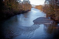 IMG_3169 (River Towy) (Malcolm Alce-King) Tags: wales river carmarthenshire wfc rivertowy cfw nantgaredig