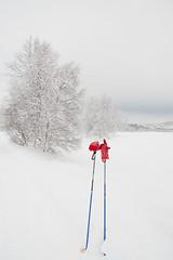 Ski poles (2Gry) Tags: blue trees winter red snow ski sport season landscape grey break skiing flat gloves rest poles knitted pause active kvamskogen