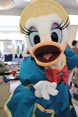 "110118 Disney Ambassador Hotel ""Chef Mickey"" ( (nagi)) Tags: japan chiba  dah daisyduck tdr  tokyodisneyresort disneyambassadorhotel chefdonald"