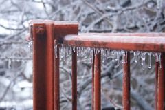 On a morning like this (neelgolapi) Tags: winter red white storm cold ice rain frozen grill february icicles