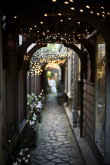 Like a storybook (Pink Scarf) Tags: lights alley dof bokeh christmaslights carmel canon5d carmelbythesea canon50mm14