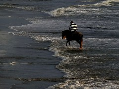 easy going (werner boehm *) Tags: sea italy beach water strand meer wasser waves mood riding reiter pferd italie pullover stimmung reiten streifen toskana wellen wernerboehm