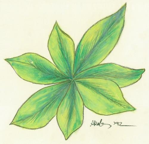 Les feuilles vivantes (The living leaves)