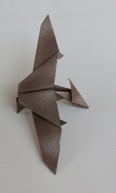 The Worlds Newest Photos Of Origami And Pteranodon