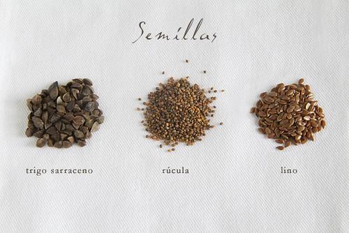 Semillas para germinar
