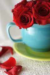 Will You have a Cup with me? (hotes trinkets/DaydreamingKat) Tags: flowers red roses floral fleur cottagestyle fiestaware flore cupandsaucer sooc straightfrommycamera sonyalphadslra700 absolutelynatural katwolfe