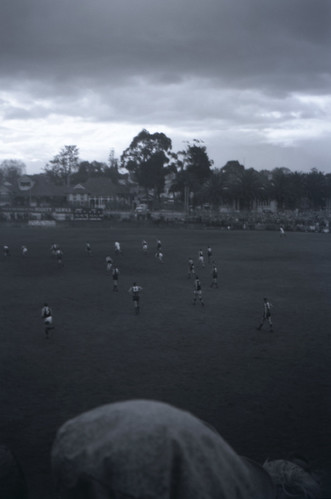 196104  116 Glenferrie Oval