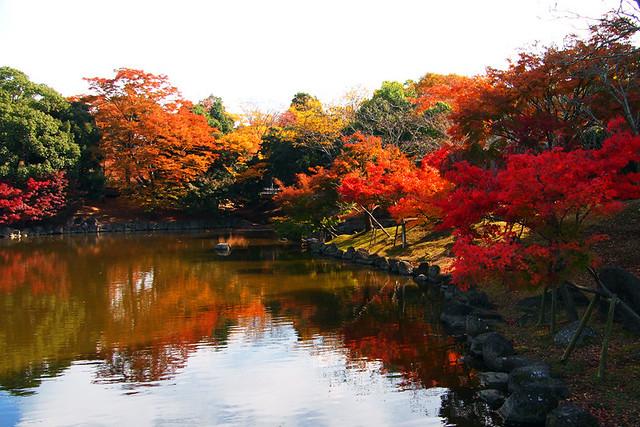 20101116_115350_奈良公園