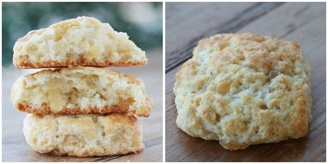 Meyer Lemon Ginger Scones Collage 2