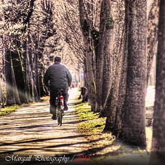 The old man - HDR - Cuneo - Italy - Meyer Optik 50mm f1,8 (Margall photography) Tags: old winter italy man tree bike photography 50mm italia piemonte f marco biker lonely mm f18 18 50 avenue cuneo hdr meyer optik galletto margall