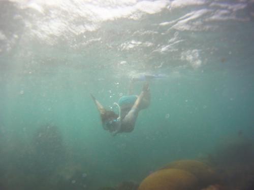Jamaica Vacation, Negril, Treasure Beach, Montego Bay Feb 4 to 11 2011           -12