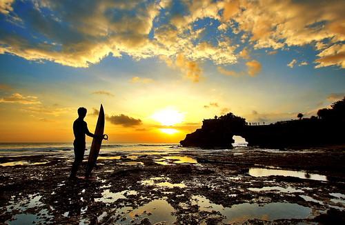 Surfer Paradize