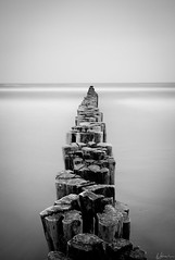 Buhne 1 (Andreas Strauch) Tags: wood longexposure sea beach water strand blackwhite meer wasser waves balticsea holz ostsee wellen langzeitbelichtung pfhle schwarzweis buhnen leicam8 elmarit28mmasph
