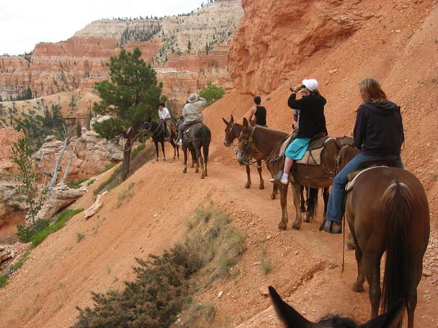 Horse riding through Bryce Canyon