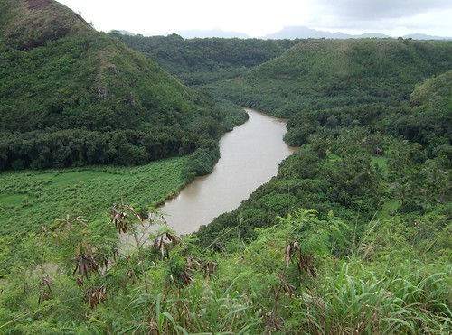Another view of the brown Wailua River