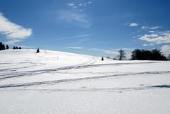 karcolás / scratch in the sky (debreczeniemoke) Tags: winter sky snow landscape transylvania scratch transilvania ég tájkép erdély hó tél rozsály karcolás canonpowershotsx20is igniş