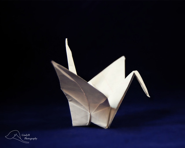 1000 Cranes for Japan