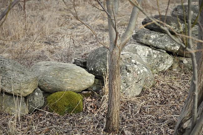 grön sten