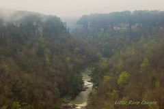 Little River Canyon (the waterfallhunter) Tags: fog canyon nikond50 littlerivercanyon lookoutmountain springtime littleriver dekalbcounty fortpaynealabama littlerivernationalpreserve wolfcreekoverlook adamsburgalabama