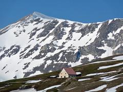 Scialpinismo Sibillini - Nord della Sibilla