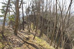 生藤山の登り
