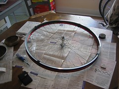 wheel build 1 005 (Andrew183) Tags: wheel velocity mavic aerohead cxp21 wheelbuild1