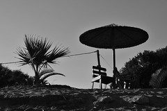 in waiting (mi ne volimo alu) Tags: absence artistic asymmetry blackandwhite chair umbrella palm silhouette sky sand beach shadow seaside shore outdoor empty furniture foliage negativespace plant round monochrome