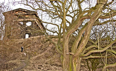 Penshaw Monument (CWhatPhotos) Tags: pictures camera wood city trees tree slr monument digital canon that lens eos photo foto image zoom photos hill picture taken images have fotos 7d which folly contain sunderland penshaw 18200mm nearsunderland cwhatphotos