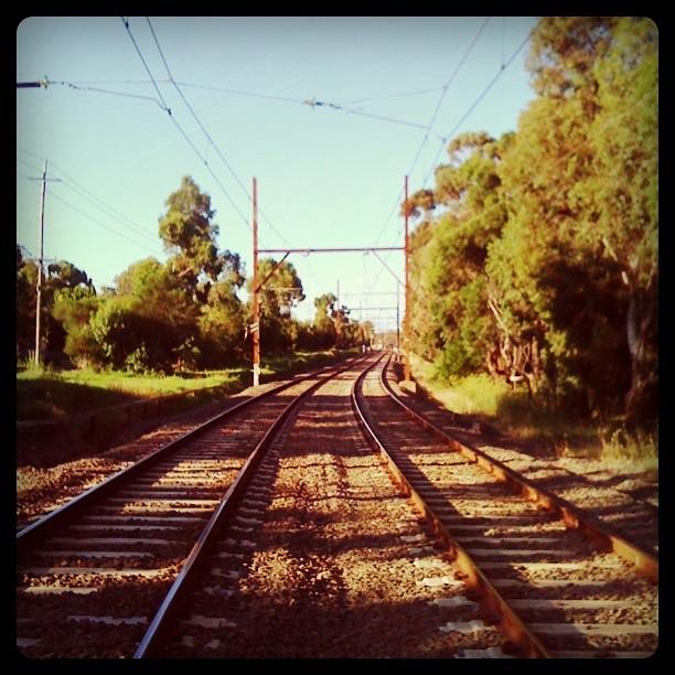 Across the Hurstbridge line