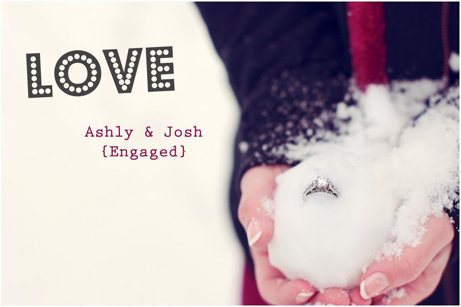 ash josh1