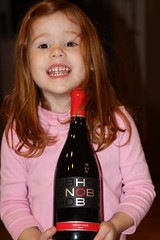 Hob Nob Pinot Noir 2009