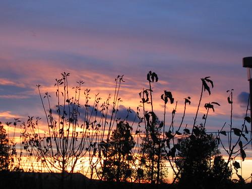 Amber Lake sunset 9