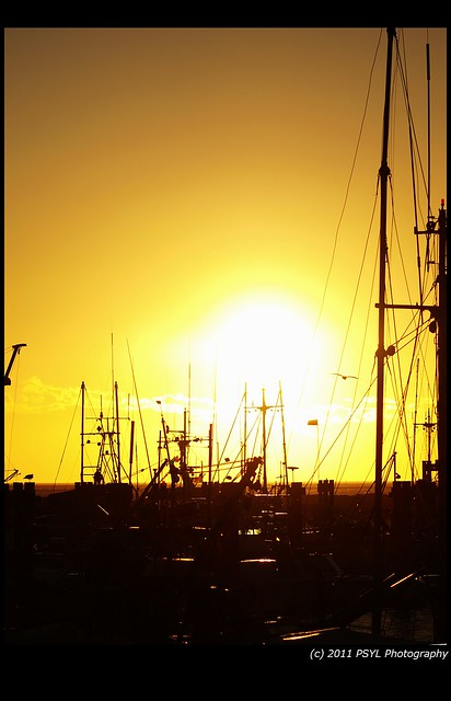 Sunset in Steveston