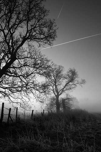 Misty morning contrails