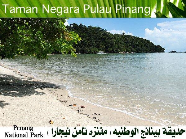 رسوم دخول الاماكن السياحيه في ماليزيا 40