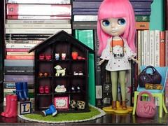 Shoes & bags & Edie