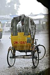 Siliguri, Monsoon rain-1 (madamasu) Tags: india rain nikon monsoon riksha westbengal siliguri d700 leitax leicaapomakroelmarit100mm