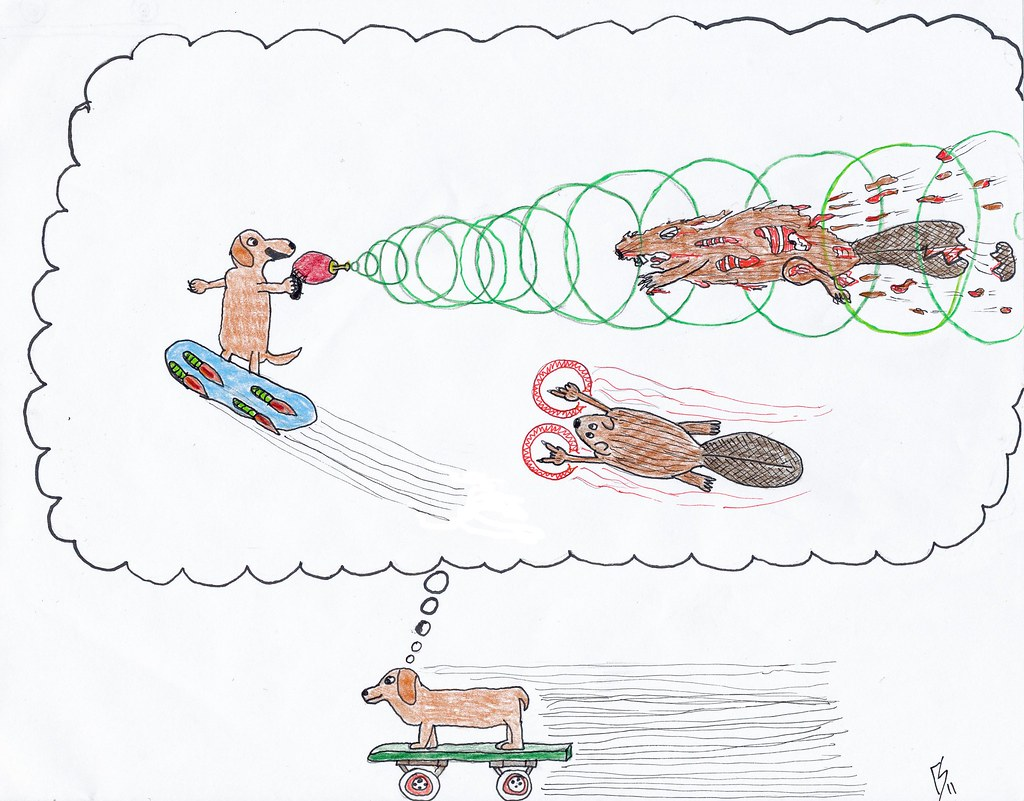 Dog on Skateboard and Magic Beavers for Toby and Nina
