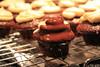 chocolate dipped cupcake (cupcakedesign) Tags: cupcake chocolatedipped