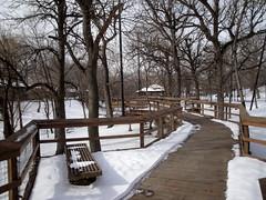 Henry Doorly Zoo - Simmons Aviary (fkalltheway) Tags: bird nebraska omaha aviary henrydoorlyzoo omahashenrydoorlyzoo fkalltheway simmonsaviary