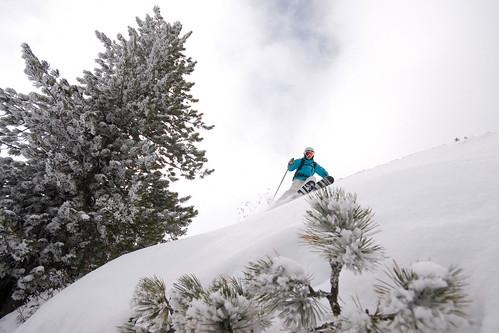 Test Freeski lyží 2010/2011