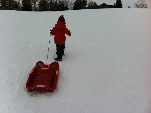 The Best Tobogganing Hill in Calgary