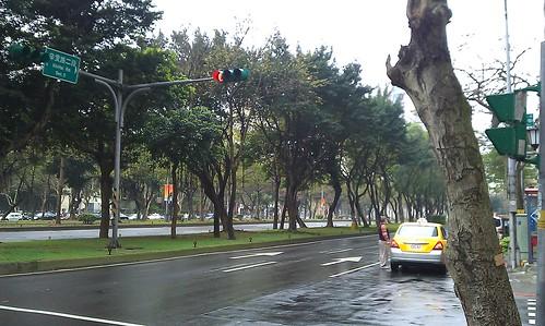 雨中辛亥路