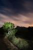 Le acompañan... (Toni Iglesias ) Tags: barcelona montserrat catalunya nocturnas montañas 1116 400d
