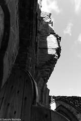 IMG_5816.jpg (Satoshi Nishida) Tags: bw abbey rock wales landscape arch oldchurch colum tinternabbey ruined piller timebehind steppingstorne