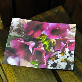 Postcard 4